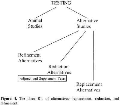 different alternatives to animal testing