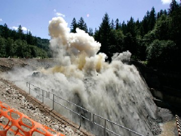 Marmot Dam Oregon S Largest Dam Is Being Removed Salmon