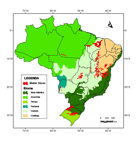 Thousands Of Hectares Of Tropical Forest Are Saved