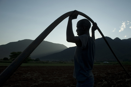 The groundwater boom in Asia has increased the productivity of many farmers: but careful analysis is now needed to manage this sustainably. The groundwater potential for African farmers is huge and new research is seeking to identify the most cost effective opportunities.  Photo: Graeme Williams/IWMI
