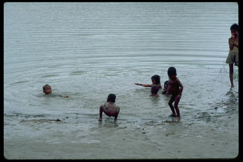 "Children playing in pond in Bangladesh.  Defecating in water is a frequent cause of disease transmission.: Shigellosis, the archetype of a disease resulting from poor personal and environmental hygiene and sanitation, causes an estimated more than 1,000,000 deaths a year. It was the second most common cause of diarrhea among U.S. military personnel during the recent Iraq war.  From Michael L. Bennish and M. John Albert, ""Shigellosis,"" chapter in ""Water and Sanitation Related Diseases and the Environment: Challenges, Interventions and Preventive Measures."""