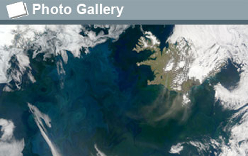 The North Atlantic Bloom: swirling artwork in the sea, plankton bloom in spring, summer.: Photograph courtesy of NASA Earth Observatory