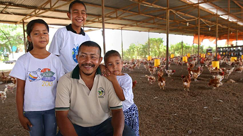 Family chicken farm.: Photograph by IFAD.
