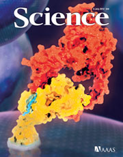 The researchers' work is described in the July 6, 2012 issue of the journal Science.: Photograph Copyright AAAS 2012