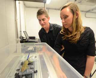 """Alyssa Stark, PhD candidate in Integrated Bioscience and Timothy Sullivan, undergraduate student in Biology: at the University of Akron.""  Photograph courtesy of University of Akron"