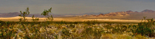 Mojave: Photograph courtesy of the US  National Parks Service