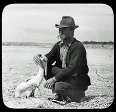 Paul Kroegel, Pelican Island National Wildlife Refuge.: Photograph courtesy of NOAA